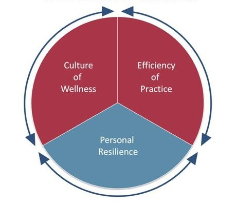 Model for Professional Fulfillment